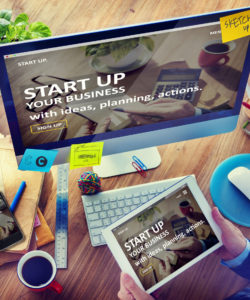 Start Up Law